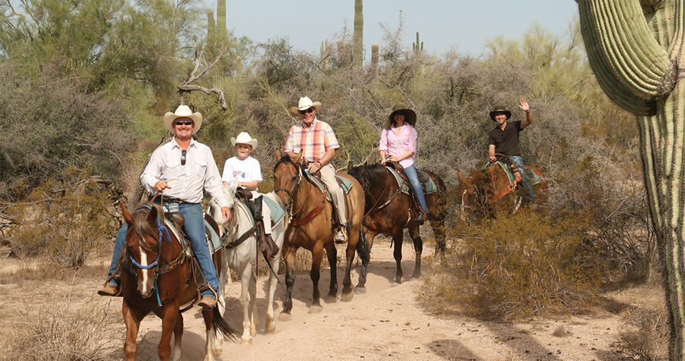 Top 5 Ways To Explore Scottsdale S Sonoran Desert