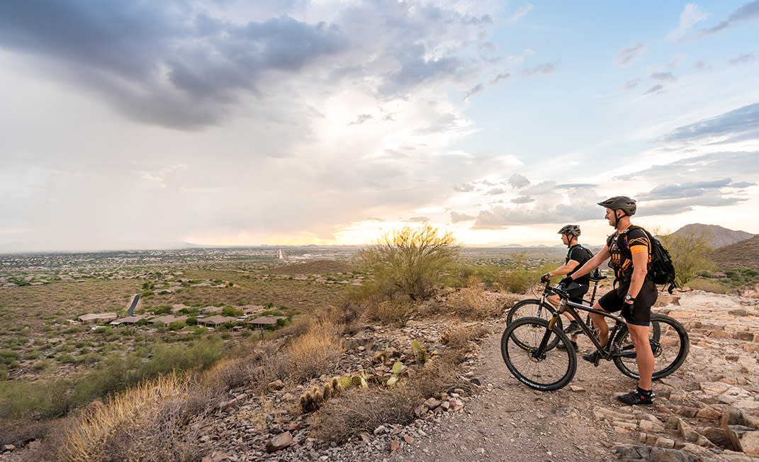 5 Surprises on Scottsdale Trails