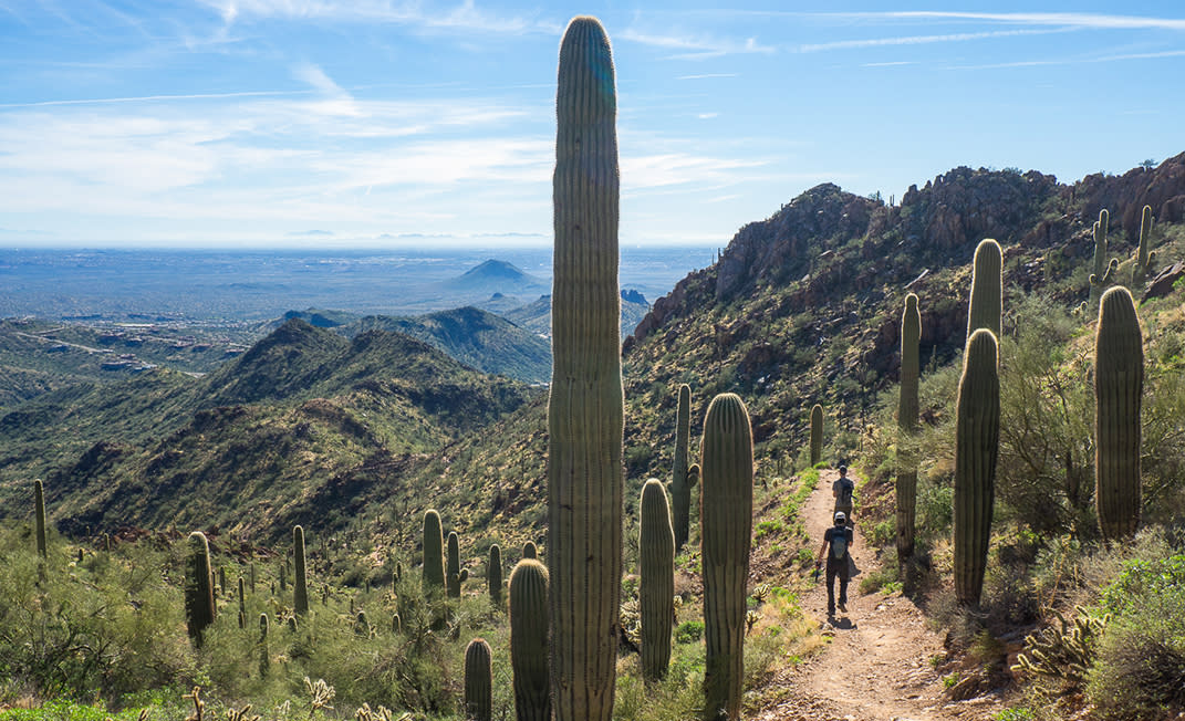 Challenging Fitness Hikes in Scottsdale