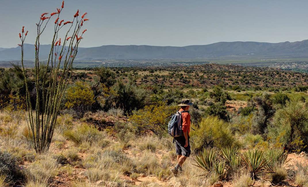 1000 Mile Hike