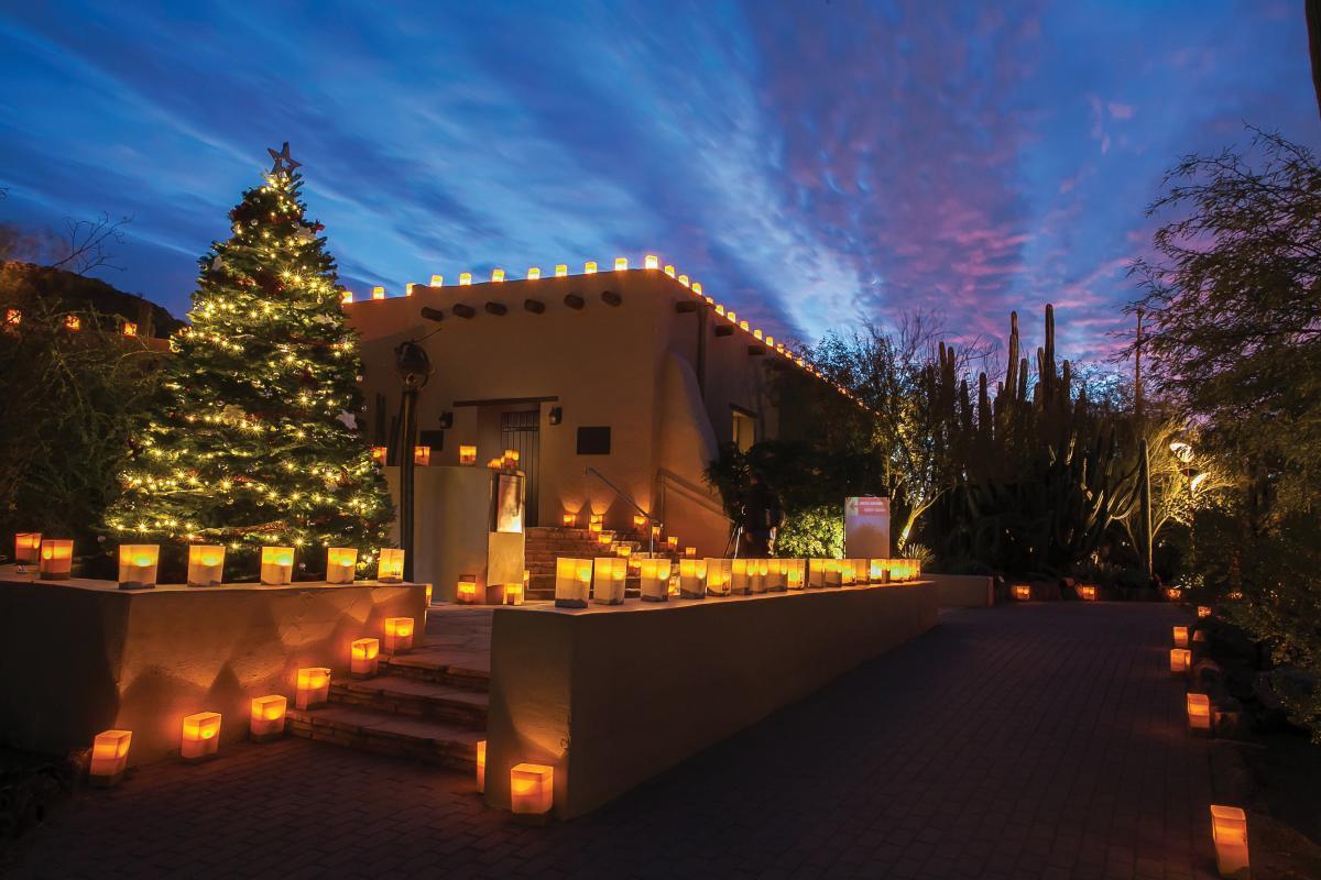 Luminarias at Desert Botanical Garden