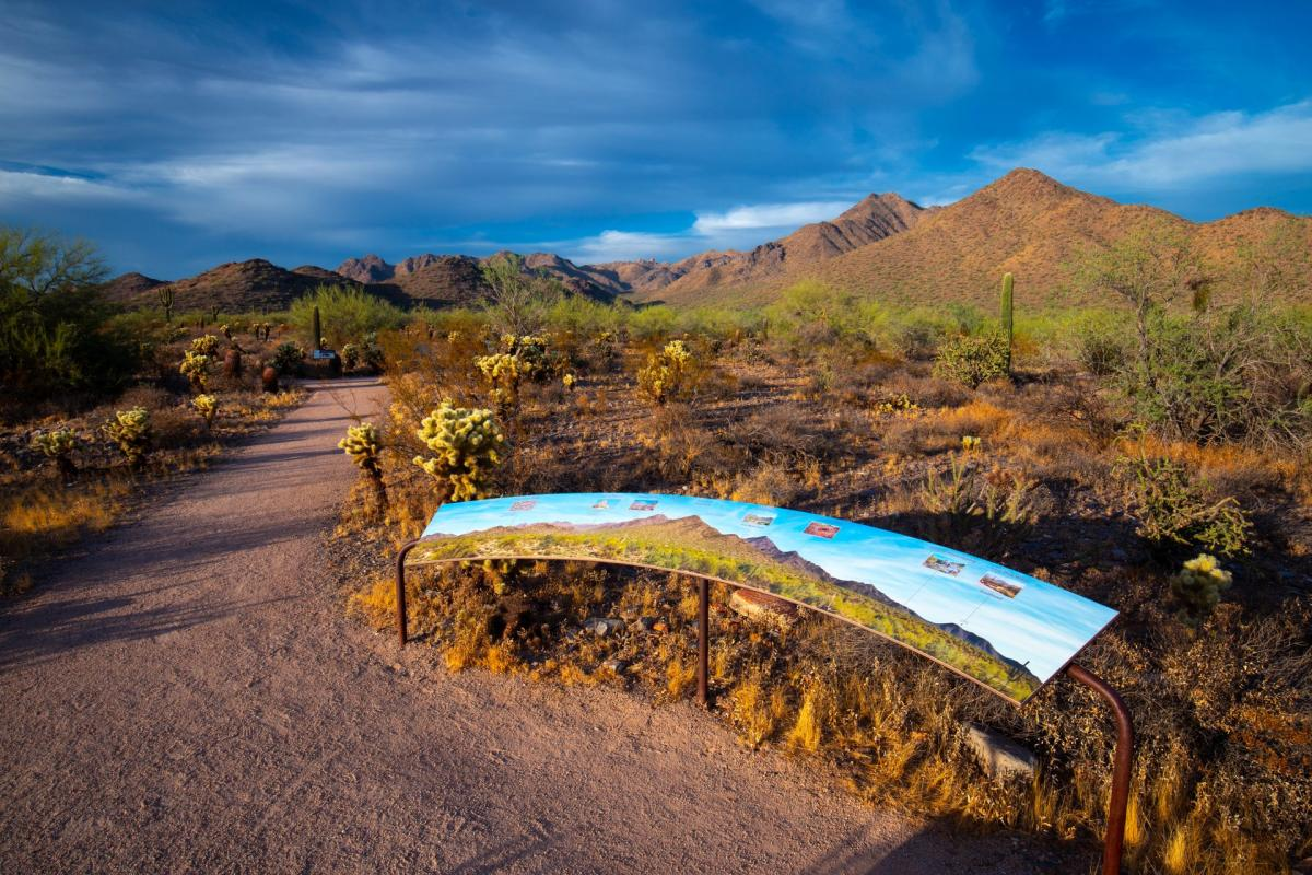 Bajada Nature Trail