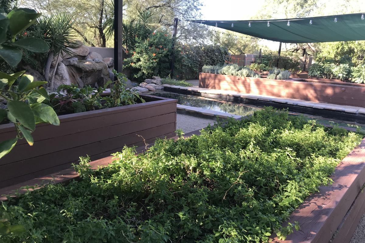 Boulders Organic Garden