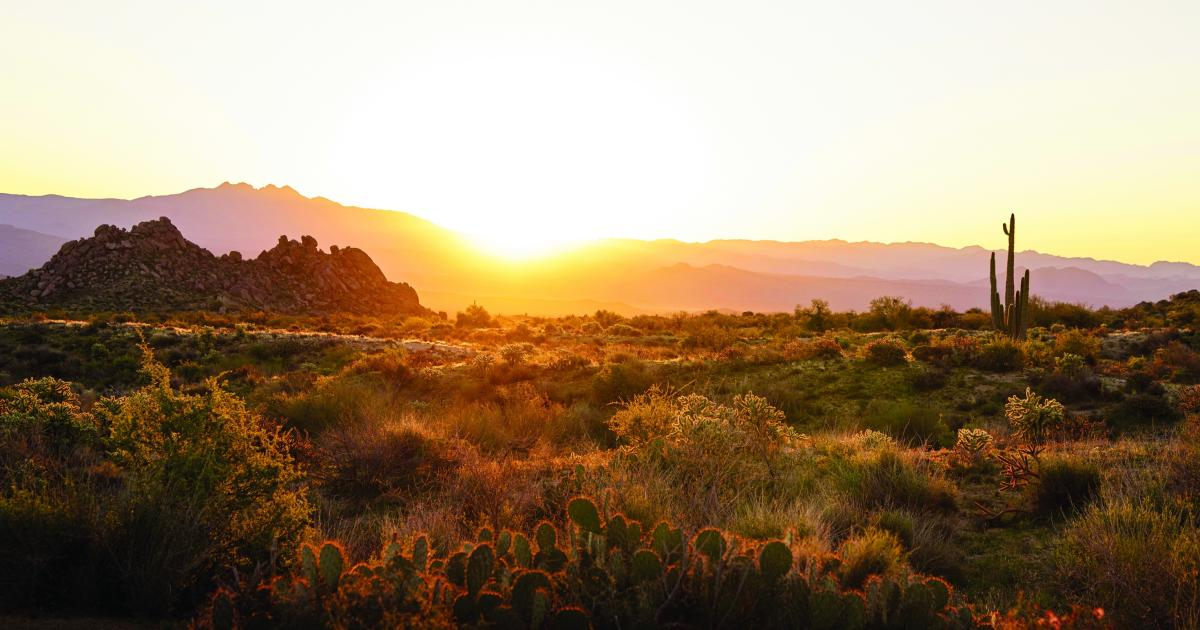 Official Travel Site for Scottsdale, Arizona